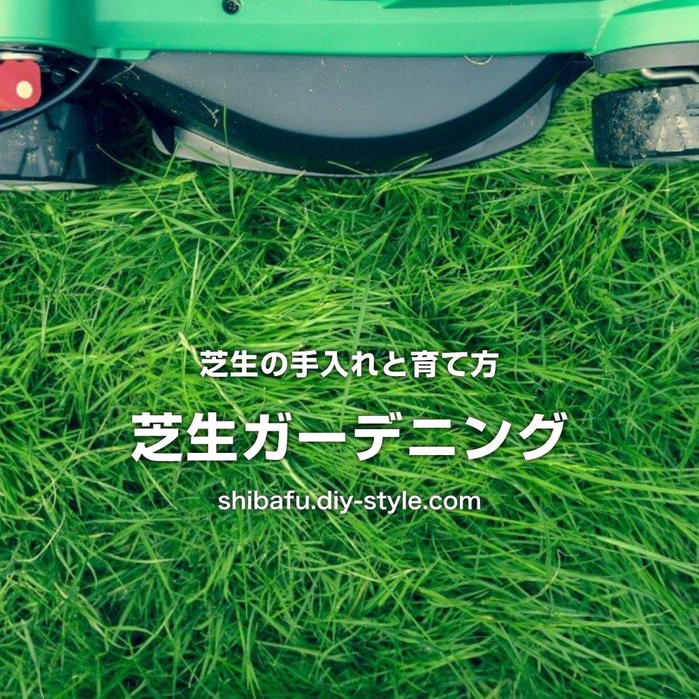 芝生の手入れと育て方